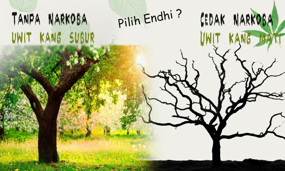 poster anti narkoba bahasa jawa | armadarizalixf